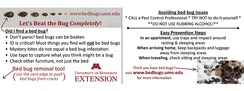 ... Bedbug Identification Card.