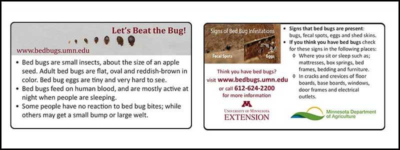 let's beat the bug ID card