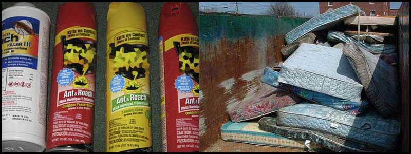 insecticide cans and mattresses