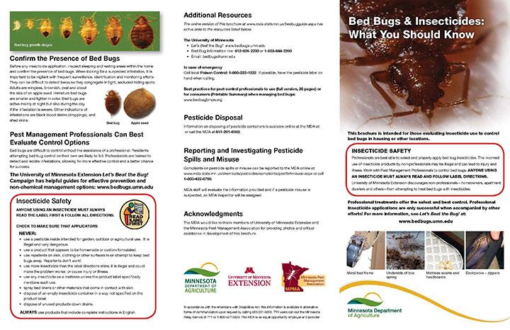 bed bugs and insecticides informational document
