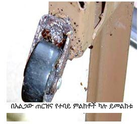 wheel of metal bed frame with bed bug infestation